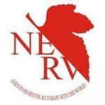名词解释——NERV